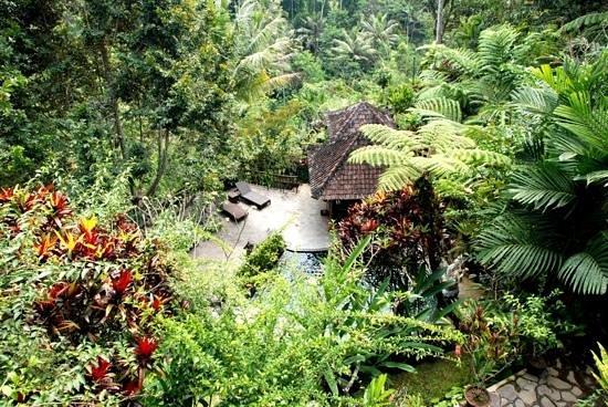 Villa Sarna Ubud: Pool from Krishna Villa