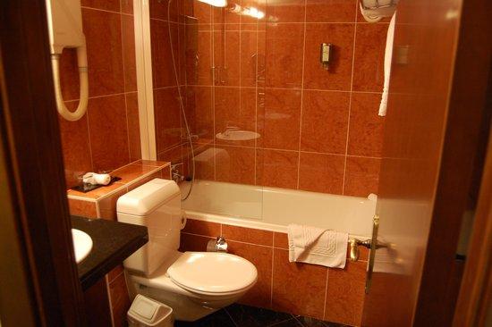 Hotel ibis Geneve Centre Lac: The Bathroom