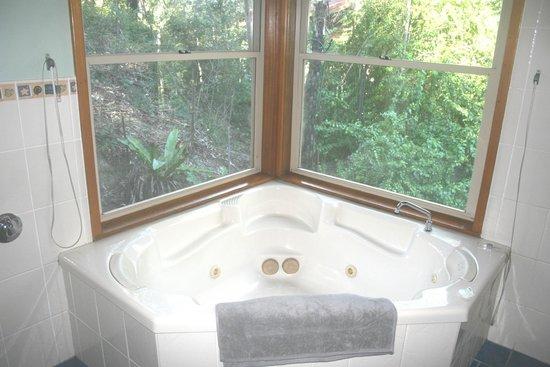 Bluegums Cabins: double spa bath