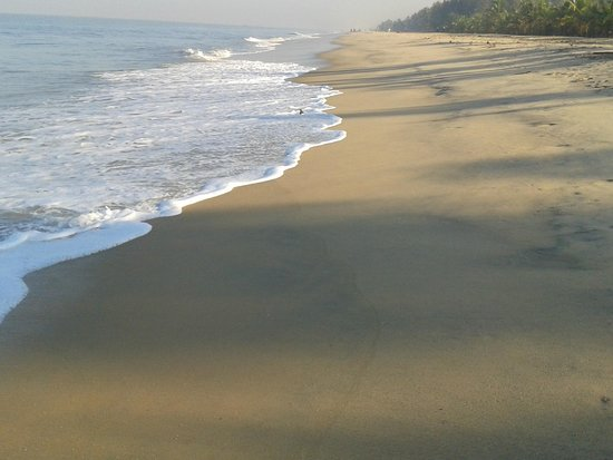 Marari Dreamz : beach