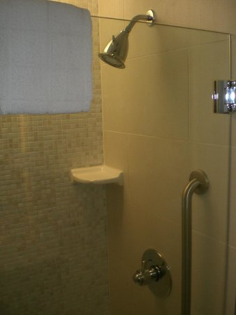 SpringHill Suites Las Vegas Convention Center: Shower with excellent water pressure and a state-of-the-art shower head.