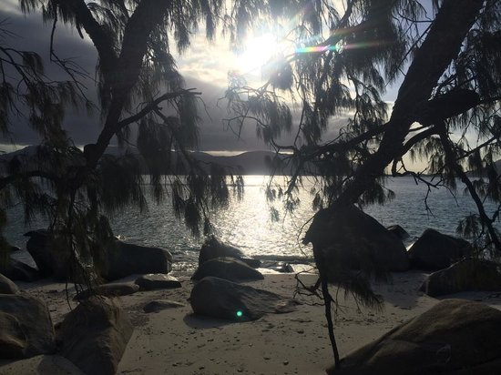 Fitzroy Island Resort : View from Nudey beach
