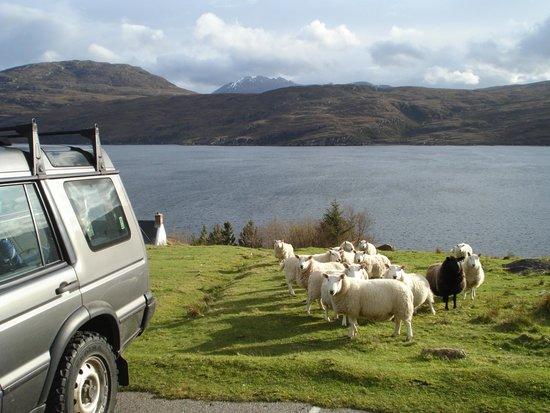 Ardvreck House : Net boven Ullapool, pal aan de Loch Broom