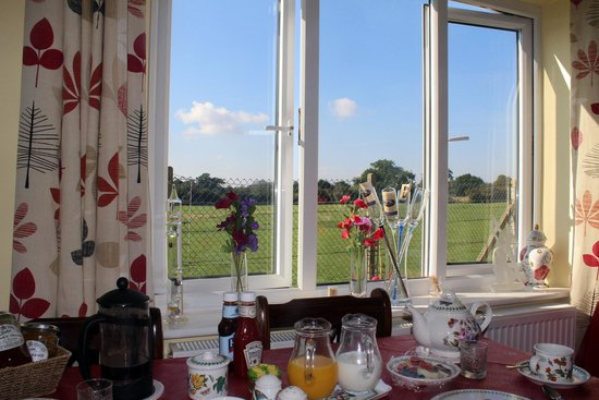 Limburn House: View from a breakfast table
