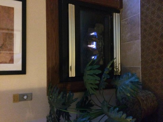Hampton Inn & Suites Rochester/Victor: the fireplace