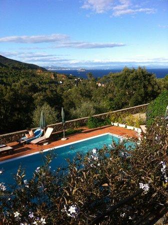Le Sughere : piscina e vista