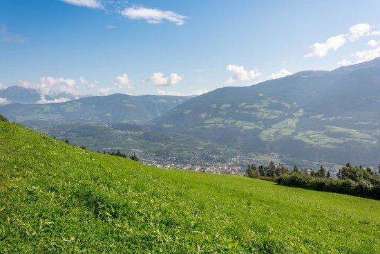 Zehrehof: Panorama