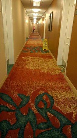 Residence Inn Richmond Chester: The floor was not wet. It was broken!
