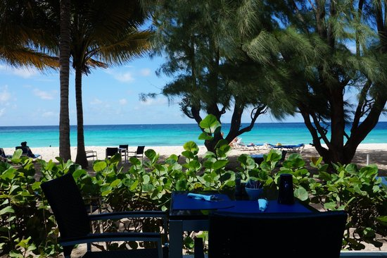 Relaxing on the beach picture of divi southwinds beach for Divi hotel barbados