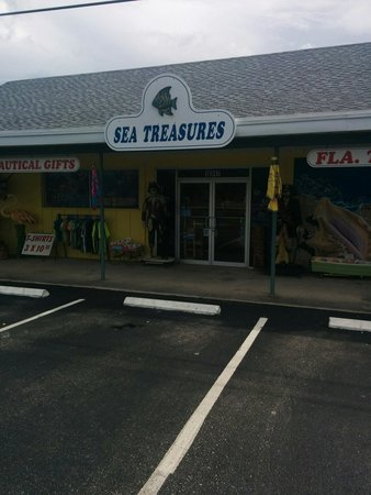 ‪Sea Treasures‬