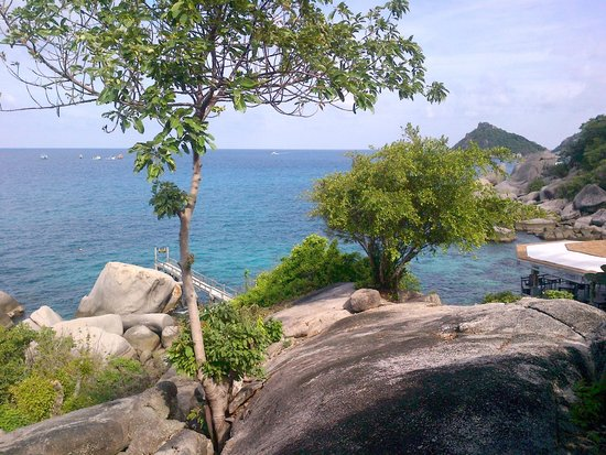 Koh Tao Hillside: vista dalla camera