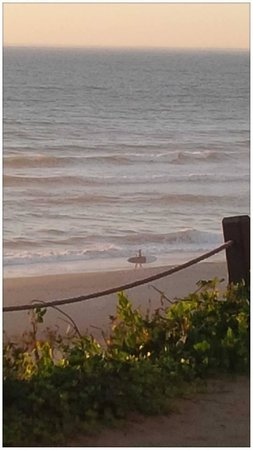 The Coho Oceanfront Lodge: The Lone Surfer...
