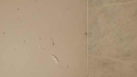 The Kennard: Flaking ceiling in shower room.