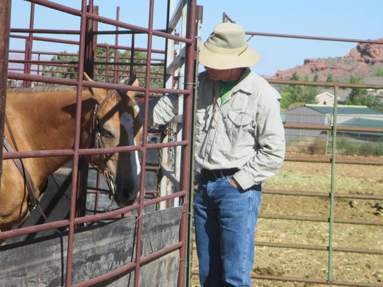 MH Cowboy - Day Tours: Stables
