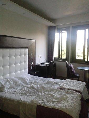 Hotel Royal Caserta: La nostra camera