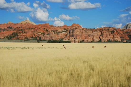 From Kolob Terrace Road, just outside the boundaries of Zion NP