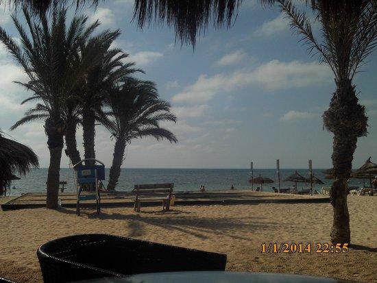 فندق لايكو جربة: This is the beach in front of the hotel