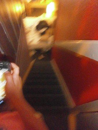 B&B Hotel Calais Coquelles Tunnel Sous La Manche: Staircase