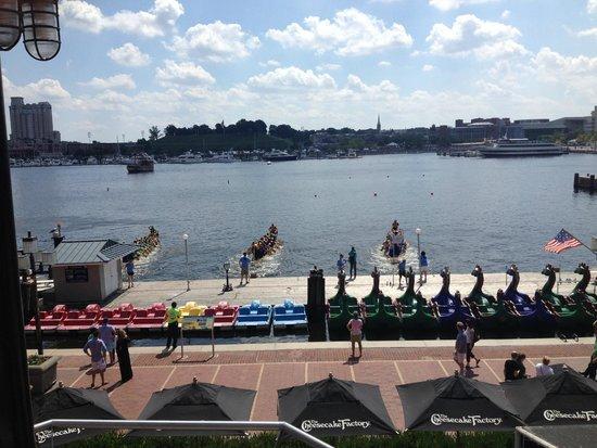 Inner Harbor: Crew Races