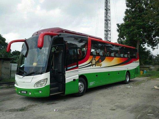 Golden Leaf Hotel : Our travel bus