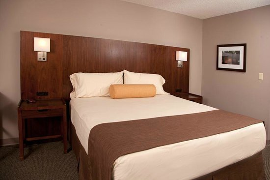 Lake Raystown Resort, an RVC Outdoor Destination: Lodge - Premium King Room