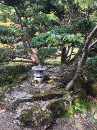 The Japanese Garden: Very peaceful
