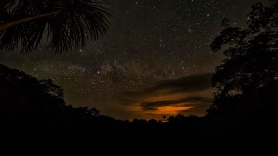 Amazonia Expeditions' Tahuayo Lodge: Night sky from the Lodge