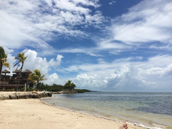 Postcard Inn Beach Resort & Marina : Facing the ocean to the left