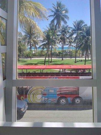 Ocean Blue Hostel: vista desde el lobby