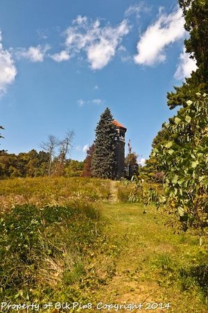 Swannanoa Palace : The Beautiful Old Water Tower