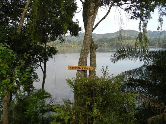 CVK Lakeside Budget Accommodation & Monkey Sanctuary: View from the lodge