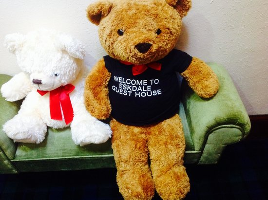Eskdale Guest House : Ted