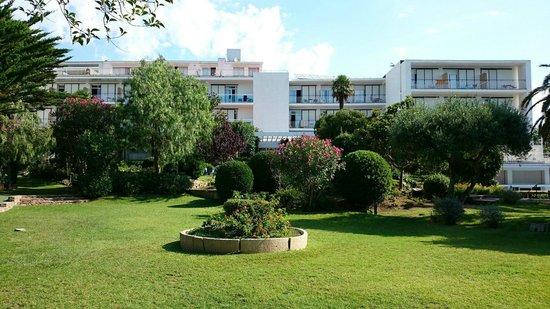 Hotel Alga: Vista hotel y zona ajardinada