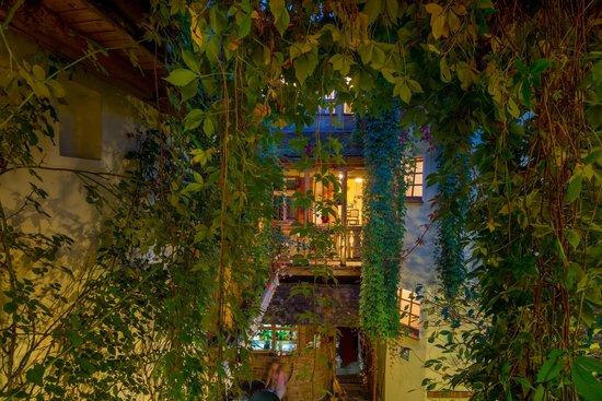 Villa Petra : courtyard