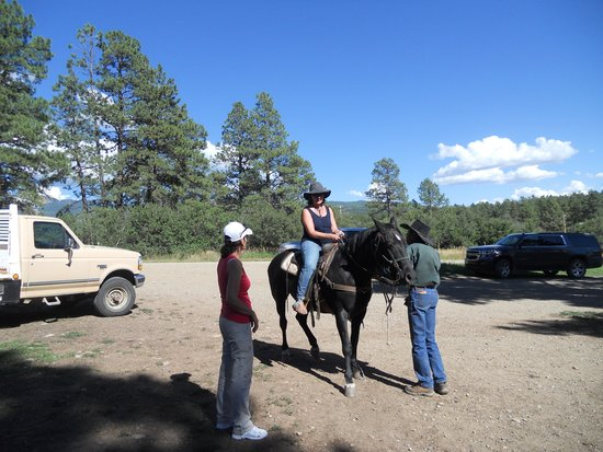 Rimrock Outfitters: lezioni di equitazione