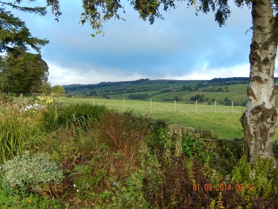 Cherry Tree Cottage: view from the garden !