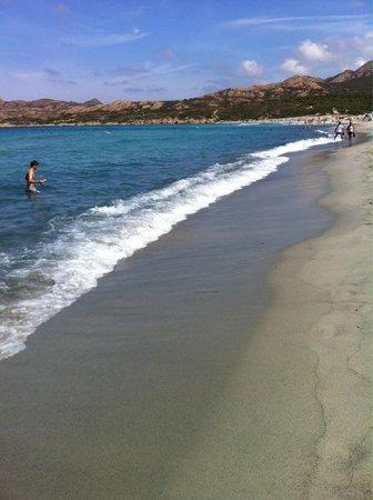 Residence Cala di Sole : Spiaggia Algajola