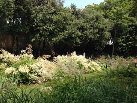 Parc Andre-Citroen: Jardim Branco
