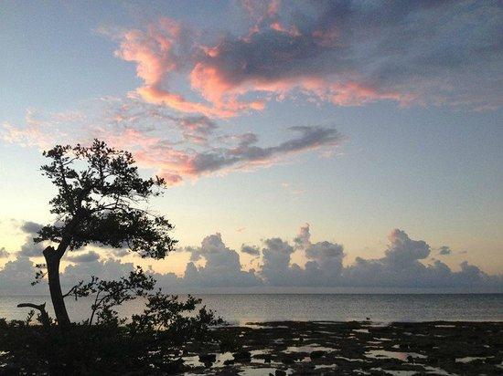Long Key State Park: Sunrise