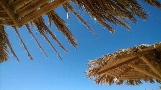 Hilton Hurghada Plaza : Beautiful blue