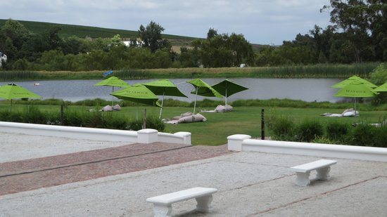 Warwick Wine Estate: Picknick grounds