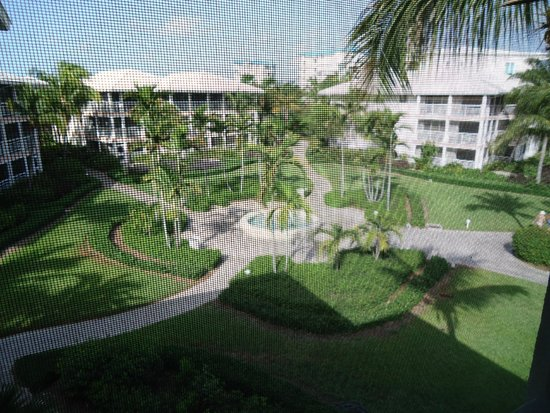 Ocean Club Resort : From our room on the top floor!
