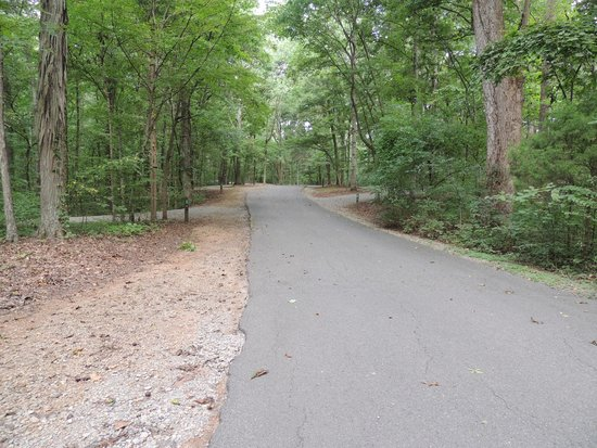 campground road - Picture of Percy Priest Lake, Nashville ...