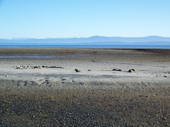Shorewater Resort: Looks like Mars, is Qualicum Beach