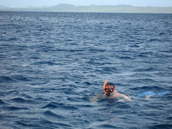Blue Bay Rentals: Snorkeling off Klein Bonaire