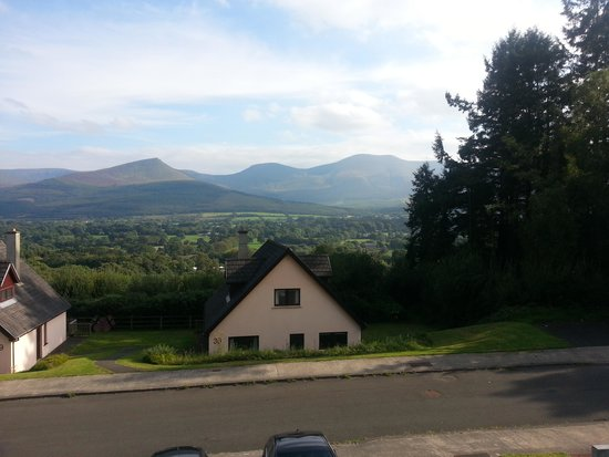 Aherlow House Hotel & Lodges: The view