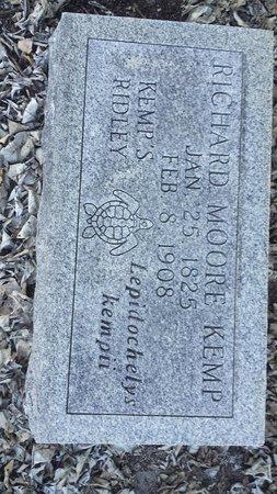 Key West Cemetery : Yay! Kemp's Turtles!