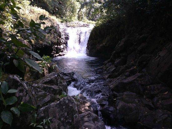 Reserva Ecologica La Otra Opcion