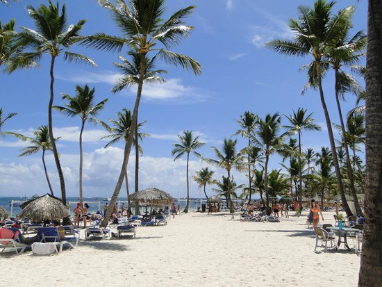 plage de l 39 hotel photo de be live collection punta cana punta cana tripadvisor. Black Bedroom Furniture Sets. Home Design Ideas