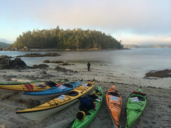 Majestic Ocean Kayaking: Broken Islands